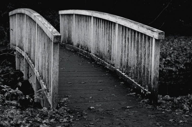 Die verwunschene Brücke