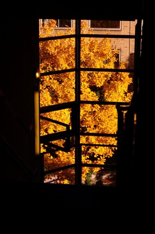 Herbststimmung im Treppenaufgang